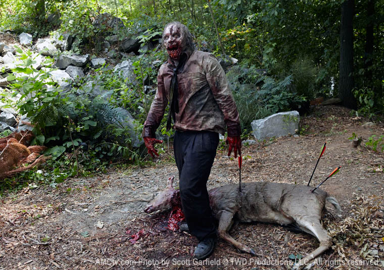 Walking-Dead-Zombie-Deer1